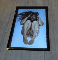 """""""På den anden side"""", 2012"""
